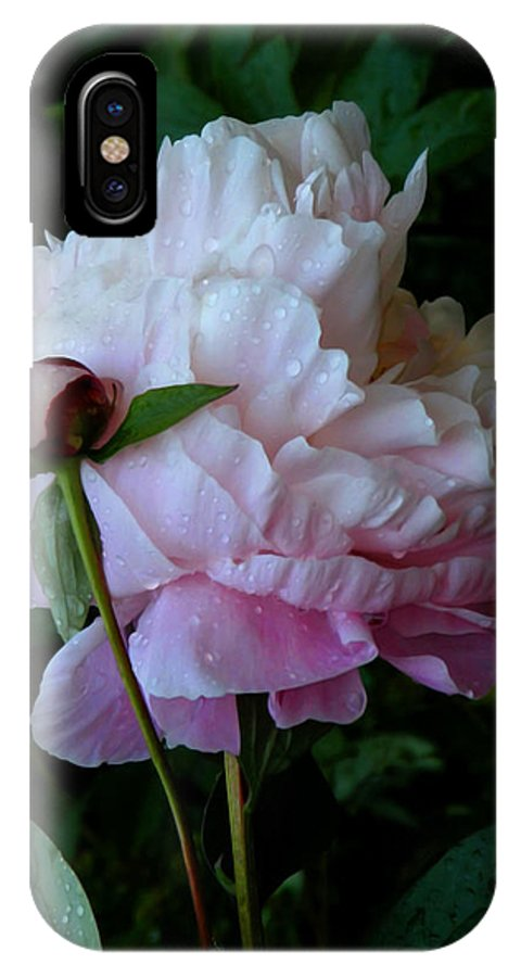 Peony IPhone X Case featuring the photograph Rain-soaked Peonies by Rona Black