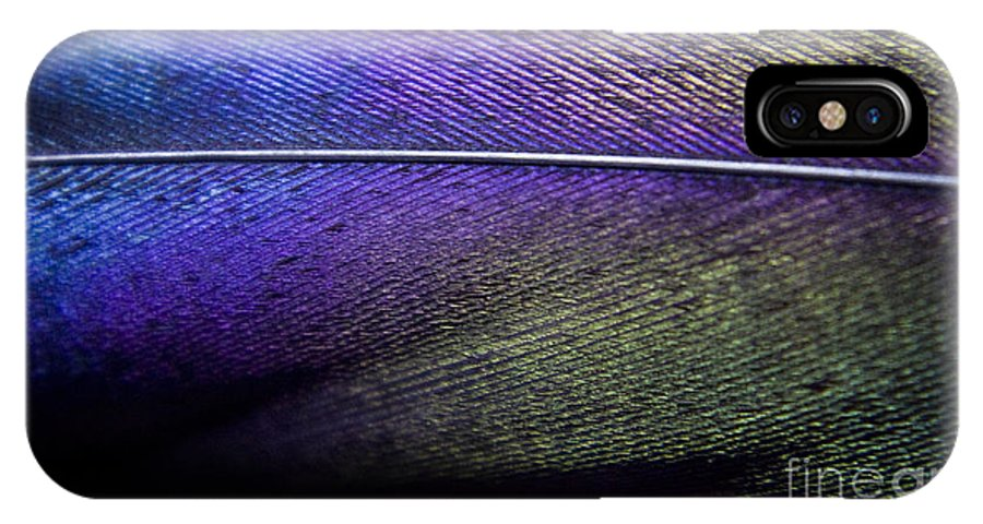 Feather IPhone X Case featuring the photograph Rainbow Feather by Andrea Goodrich