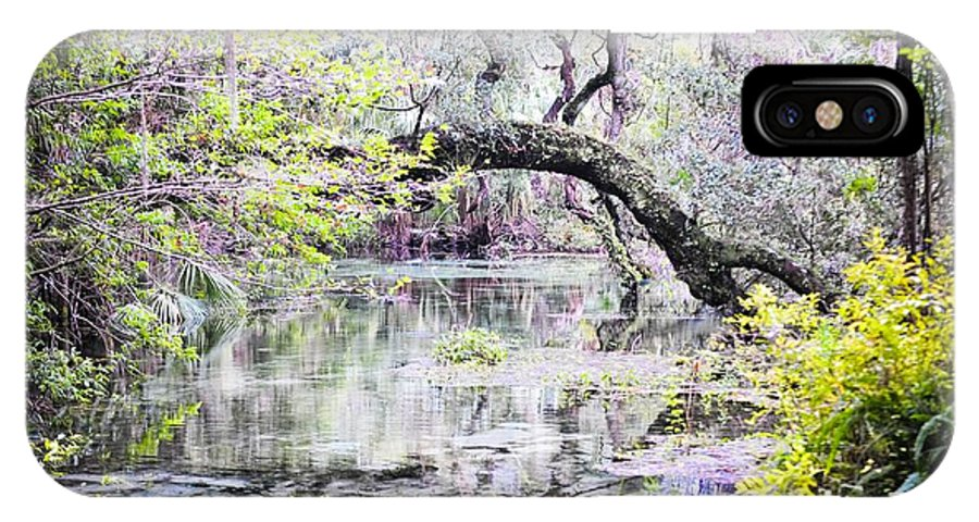 Rainbow Springs State Park IPhone X Case featuring the photograph Rainbow Springs by Dawn Duffield