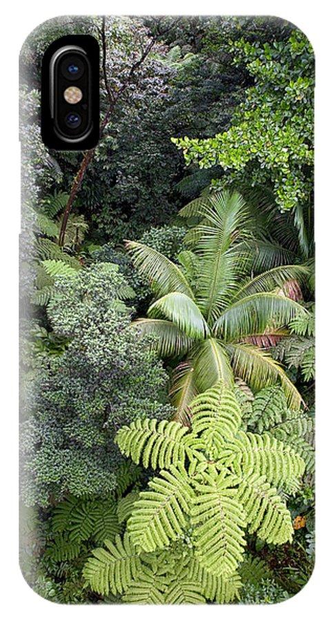 Rainforests IPhone X Case featuring the photograph Rainforest Canopy by Susan Degginger
