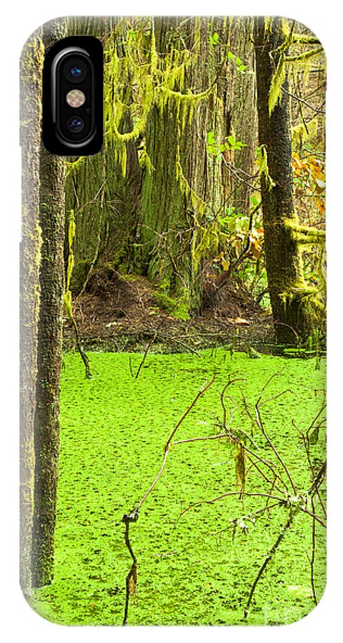 Adventure IPhone X Case featuring the photograph Rainforest Wetland Wildernis Of West Coast Bc by Stephan Pietzko
