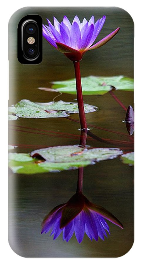 Roy Williams IPhone X Case featuring the photograph Rainy Day Lotus Flower Reflections IIi by Roy Williams