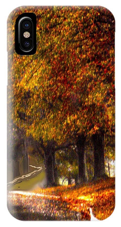 Rainy Day IPhone X Case featuring the photograph Rainy Day Path by Lesa Fine