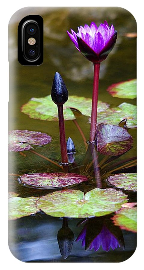 Roy Williams IPhone X Case featuring the photograph Rainy Day Water Lily Reflections I by Roy Williams