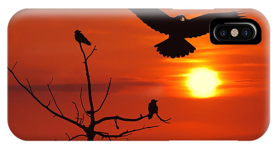 Nature IPhone X Case featuring the photograph Raven Maniac by Ron Day