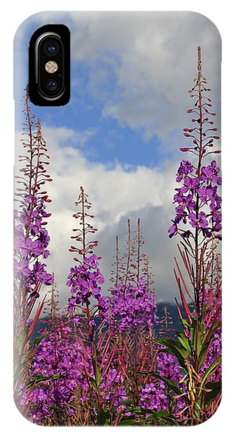 Fireweed IPhone X Case featuring the photograph Reach For The Sky by Cathy Mahnke