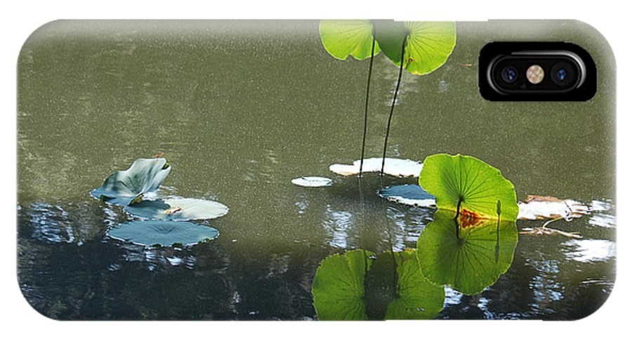 Lily Pad IPhone X Case featuring the photograph Reaching For The Sky by Suzanne Gaff