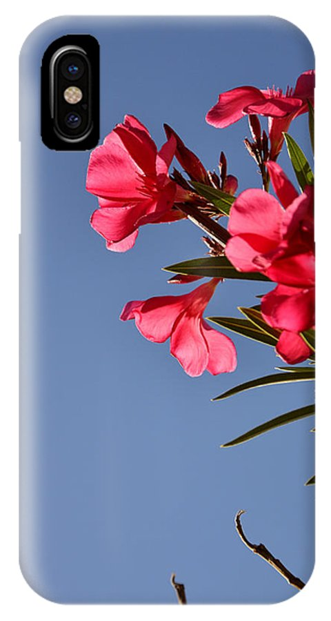 Seasons IPhone X Case featuring the photograph Reaching Out 30016 by Jerry Sodorff