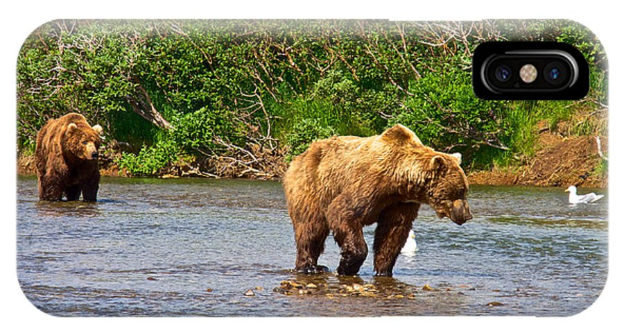 Ready To Pounce On A Salmon IPhone X Case featuring the photograph Ready To Pounce On A Salmon In The Moraine River In Katmai National Preserve-ak by Ruth Hager