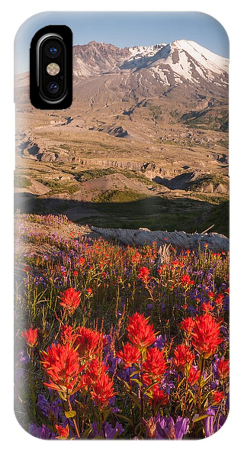 Mt St Helens IPhone X Case featuring the photograph Rebirth by Michael Trofimov