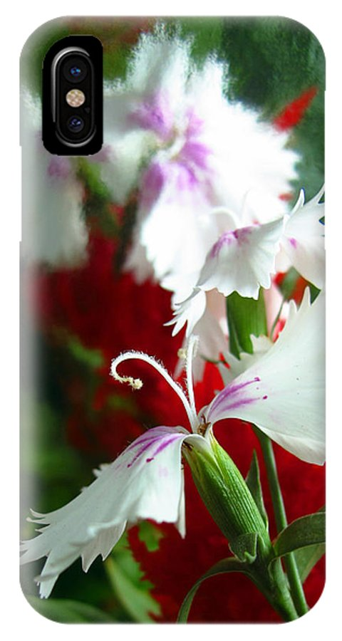 Floral IPhone X / XS Case featuring the photograph Dianthus by Scott Witte