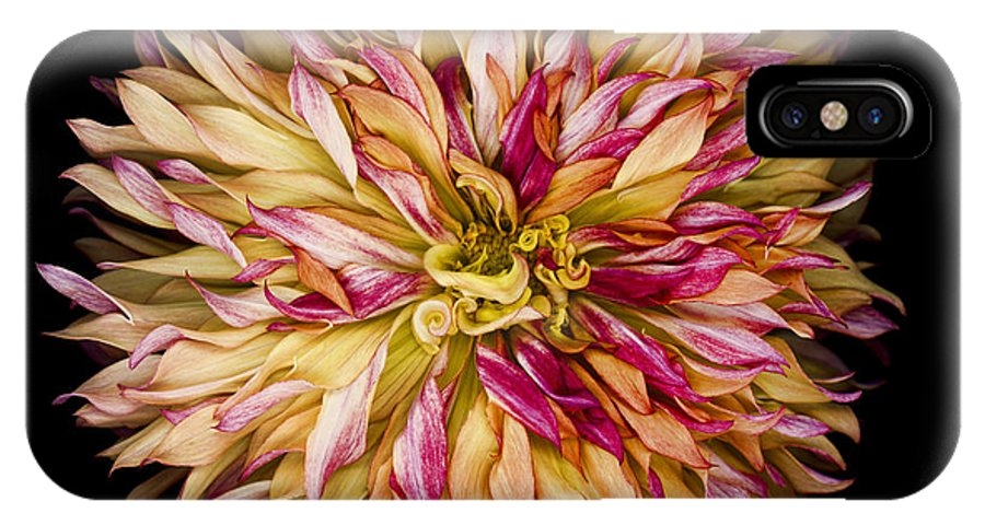 Circle IPhone X / XS Case featuring the photograph Red And Yellow Dahlia by Oscar Gutierrez