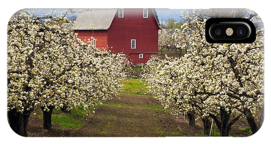 Barn IPhone X Case featuring the photograph Red Barn Spring by Mike Dawson