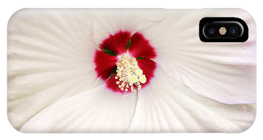 Flower IPhone X Case featuring the photograph Red Center by John Williams