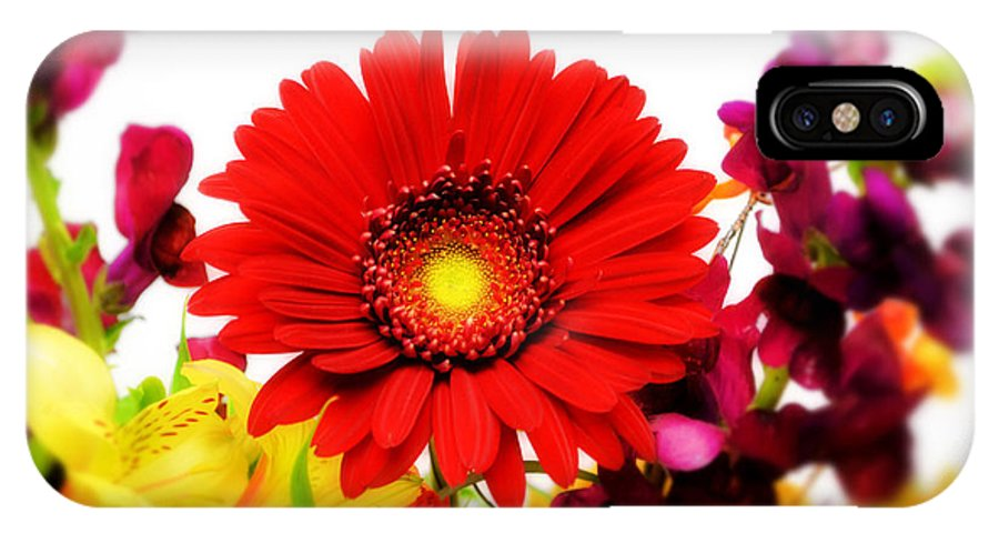 Daisy IPhone X Case featuring the photograph Red by Cindi Snow