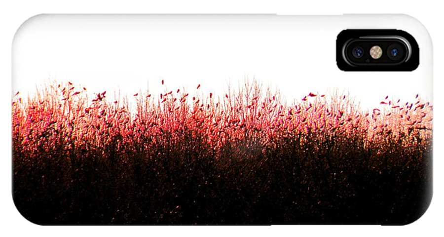 Red IPhone X Case featuring the photograph Red Dawn by M Pace