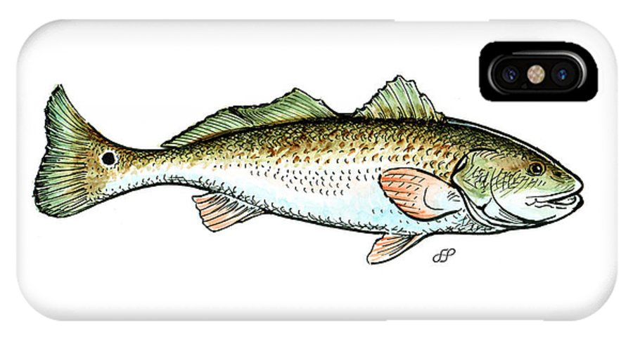 Stephen Herchak IPhone X Case featuring the mixed media Red Drum by Stephen Paul Herchak