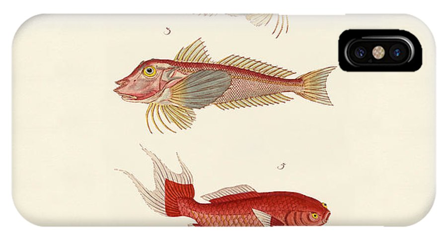 Bar Jack IPhone X Case featuring the drawing Red Fish by Splendid Art Prints