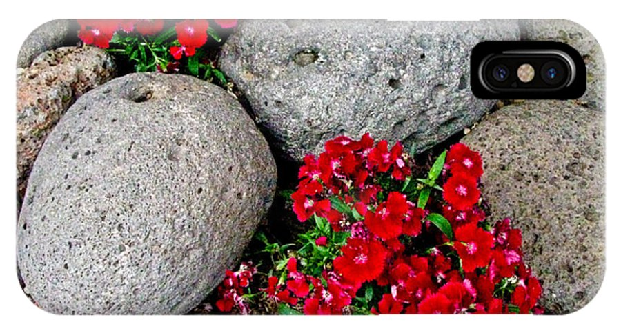 Red Flower IPhone X Case featuring the photograph Red Flower In Rocks by Steve Purifoy