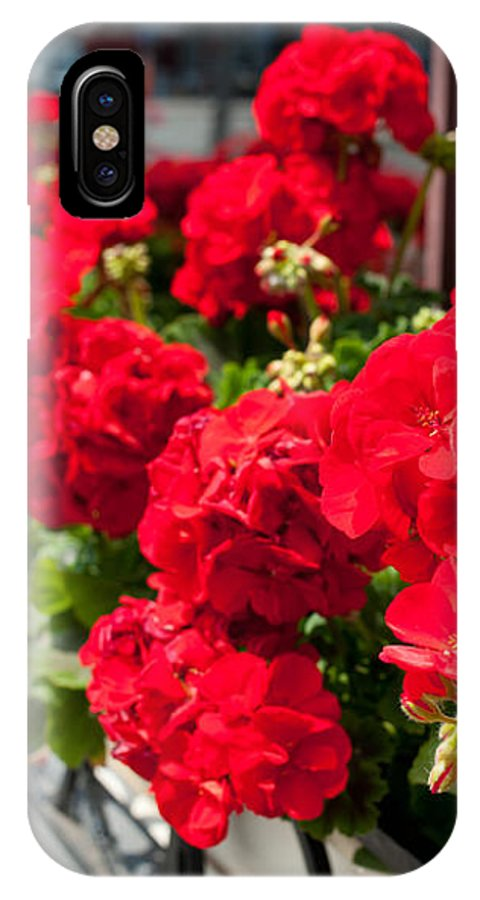 Abloom IPhone X Case featuring the photograph Bunches Of Vibrant Red Pelargonium Flowering by Arletta Cwalina