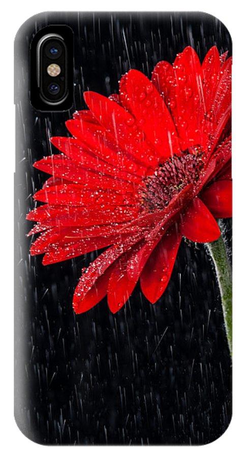 Gerber Daisy IPhone X Case featuring the photograph Red Gerber Daisy by Boyd E Van der Laan