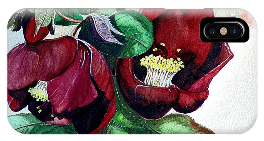 Red Helleborous Painting Flower Painting  Botanical Painting Watercolor Painting Original Painting Floral Painting Flower Painting Red Painting  Greeting Painting IPhone X Case featuring the painting Red Helleborous by Karin Dawn Kelshall- Best