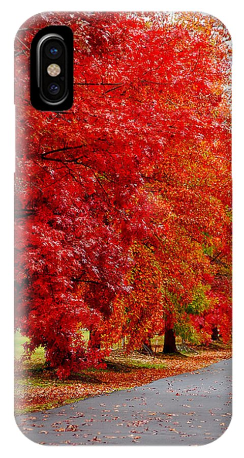 Red Leaf Leaves Fall Colors Road Wet Lined Chico Ca Tree IPhone X Case featuring the photograph Red Leaf Road by Holly Blunkall