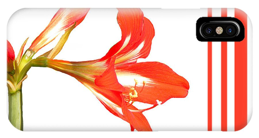 Lily IPhone X Case featuring the photograph Red Lily by Rosalie Scanlon