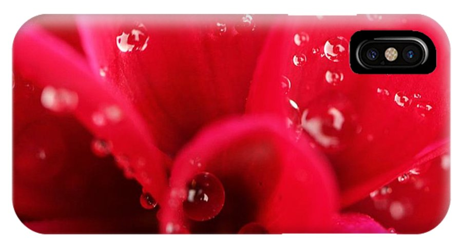 Red Flower IPhone X Case featuring the photograph Red by Mary Cherry