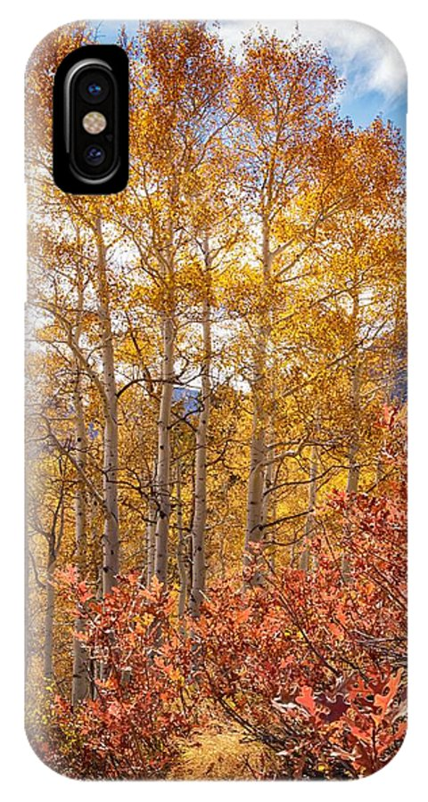 Autumn Landscape IPhone X Case featuring the photograph Red Oak Brush And Golden Aspens by Mitch Johanson