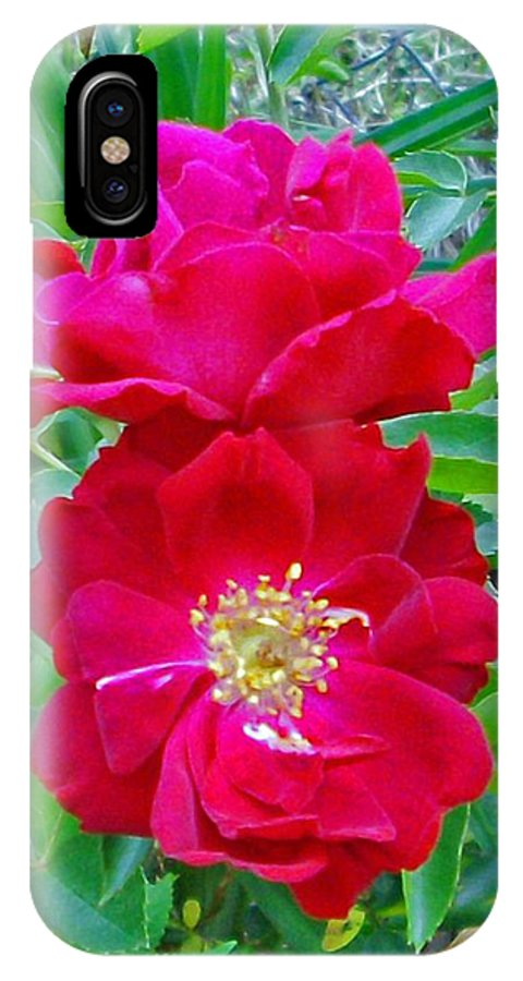 Photograph IPhone X Case featuring the photograph Red Roses by Marian Bell