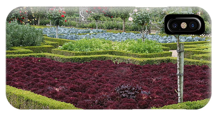 Salad IPhone X Case featuring the photograph Red Salad And Roses - Chateau Villandry Garden by Christiane Schulze Art And Photography