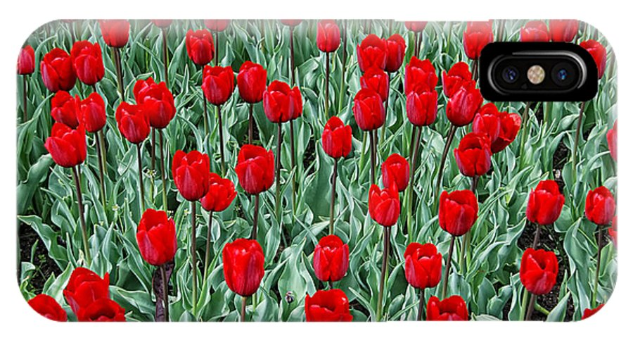 Spring IPhone X Case featuring the photograph Red Spring by Joachim G Pinkawa
