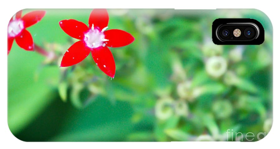 Red Flower IPhone X Case featuring the photograph Red Star by Optical Playground By MP Ray