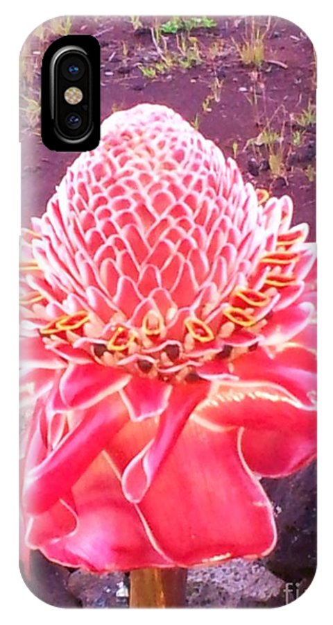 Hawaiian Flowers IPhone X Case featuring the photograph Red Torch Ginger by Chandelle Hazen