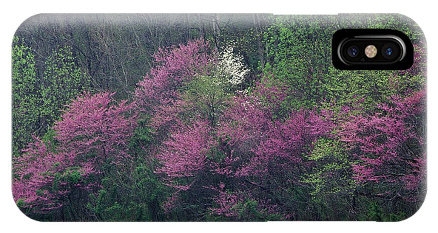Eastern IPhone X Case featuring the photograph Redbud - Fm000095 by Daniel Dempster