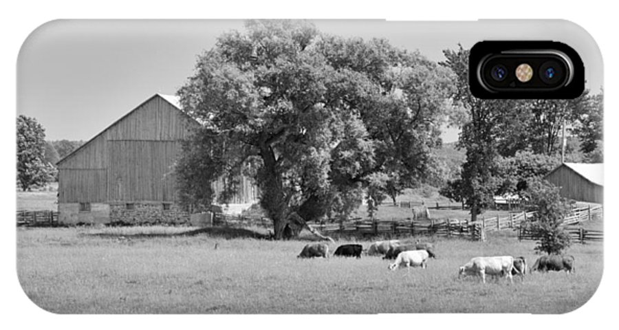 Barn IPhone X Case featuring the photograph Reive Blvd Barn 15059b by Guy Whiteley