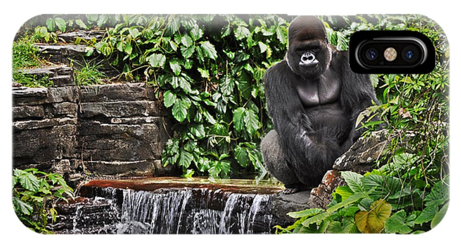 Gorilla IPhone X Case featuring the photograph Relaxation Time by Rachael Milovich