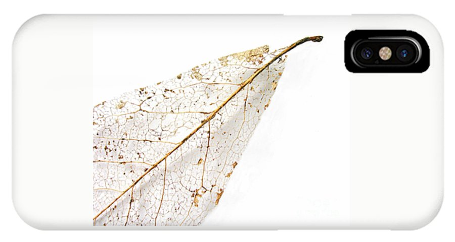 Leaf IPhone X Case featuring the photograph Remnant Leaf by Ann Horn