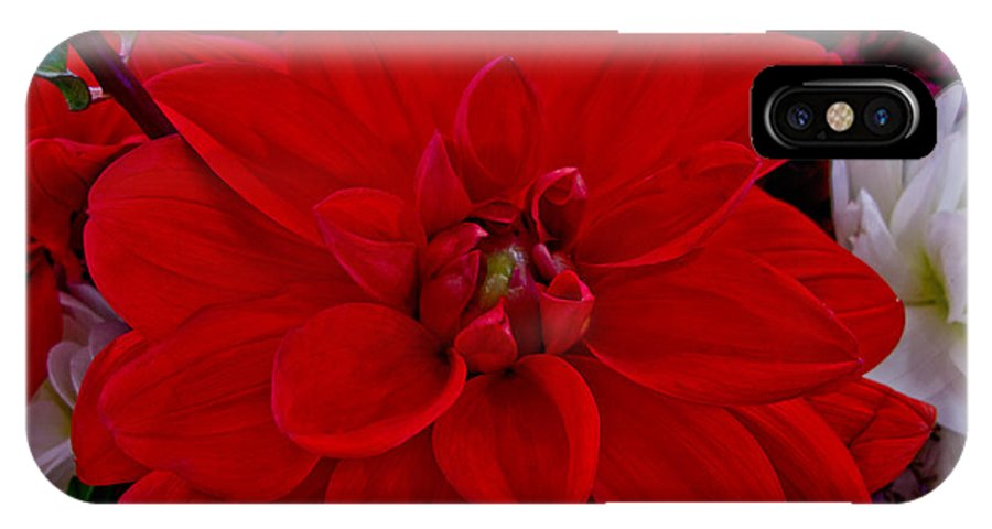 Flower IPhone X Case featuring the photograph Resoundingly Red by Arlene Carmel