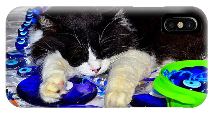 Cat IPhone X Case featuring the photograph Resting At Work by Zafer Gurel