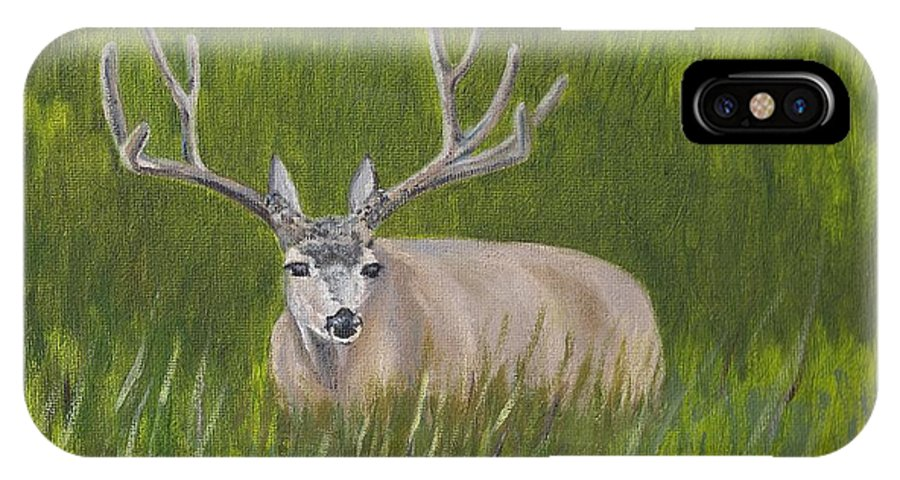 Animal IPhone X Case featuring the painting Resting Deer by Cory Justice