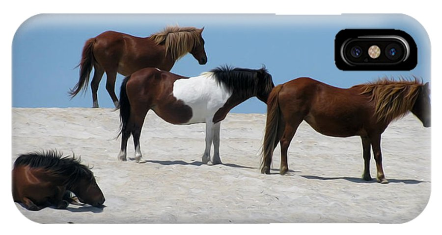 Horses IPhone X Case featuring the photograph Resting by Laurie Schneider