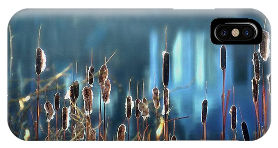 Cattails IPhone X Case featuring the photograph Rhapsody In Blue by Cindy Greenstein