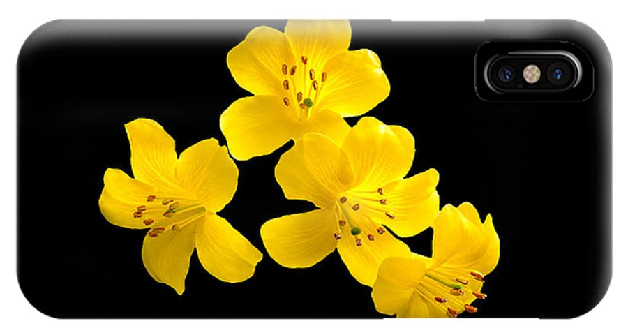 Flower IPhone X Case featuring the photograph Rhododendron by Nina Lin