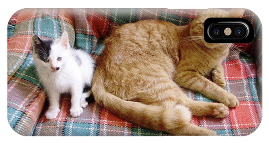 Cat IPhone X / XS Case featuring the photograph Riley And Jazz by Joann Renner