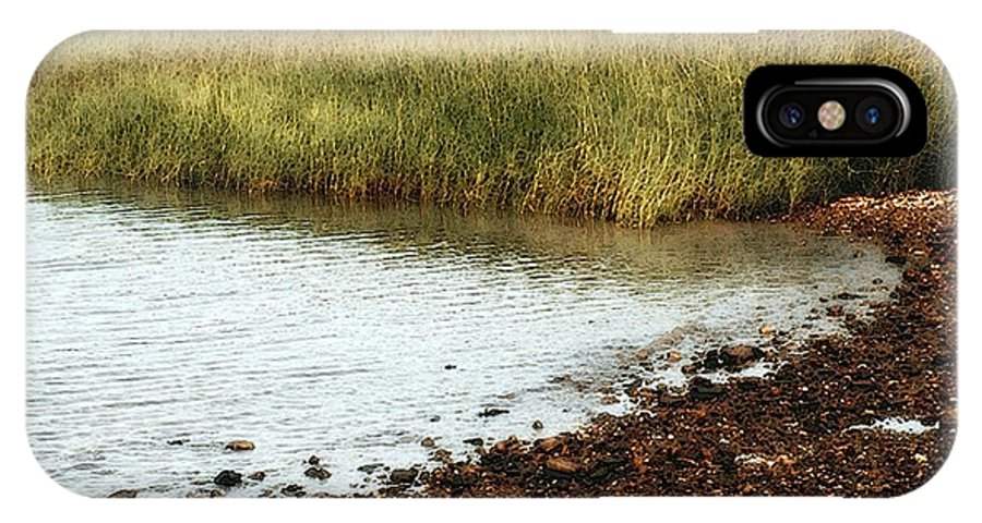 Marsh IPhone X Case featuring the painting Rippled Water Rippled Reeds by RC DeWinter