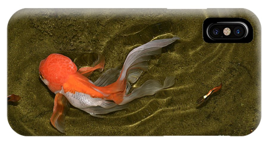 Fish IPhone X Case featuring the photograph Ripples In A Shallow Pool by Ted Guhl
