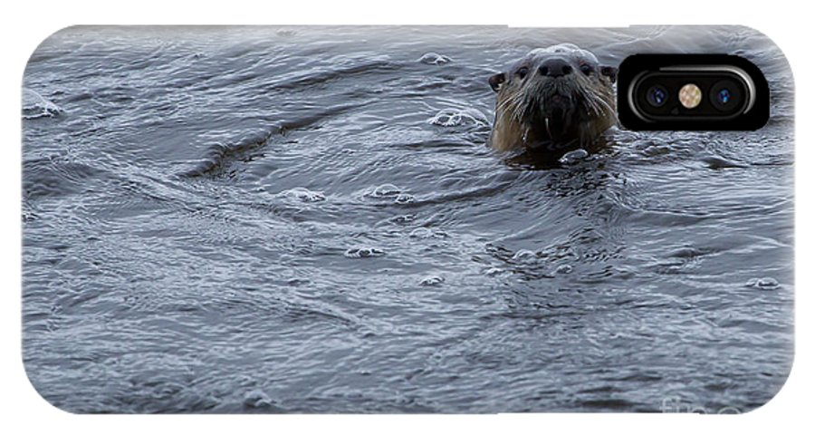 Otter IPhone X Case featuring the photograph River Otter  #0695 by J L Woody Wooden