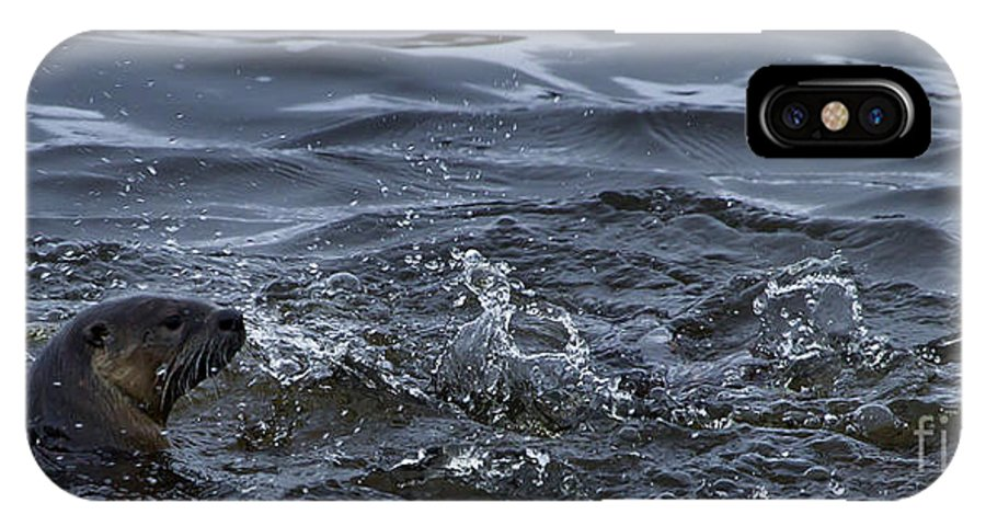 Otter IPhone X Case featuring the photograph River Otter  #0750 by J L Woody Wooden